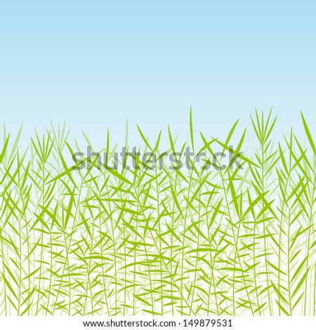 Grass, wild plants detailed silhouettes illustration background vector