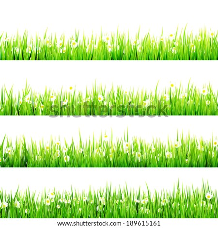Grass with camomiles isolated on white. And also includes EPS 10 vector - stock vector