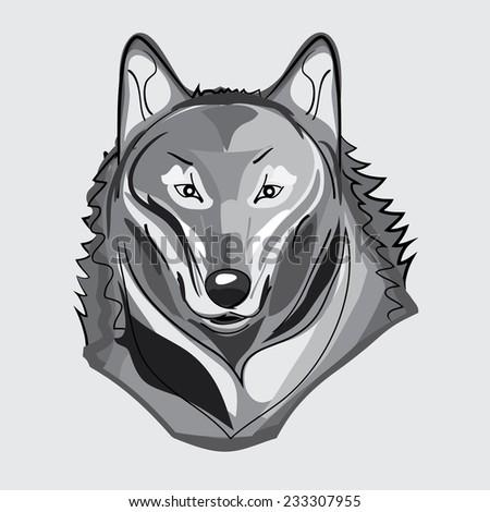 Gray illustration of wild wolf - stock vector