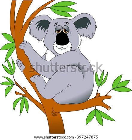 gray koala sleeps sitting on a tree branch, vector - stock vector