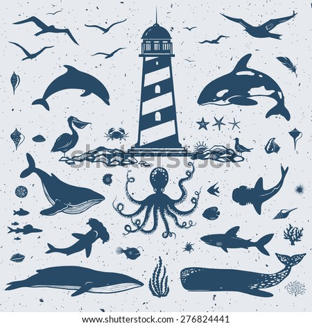 great collection of ocean creatures: dolphins, sharks, whales, fishes, sea plants, sea birds and lots of other stuff - stock vector