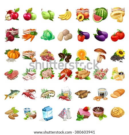 Great selection of food. Ingredients for cooking. Raw vegetables and meat products isolated on white background. Vector illustration.