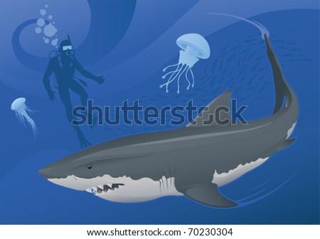 Great White Shark - vector - stock vector