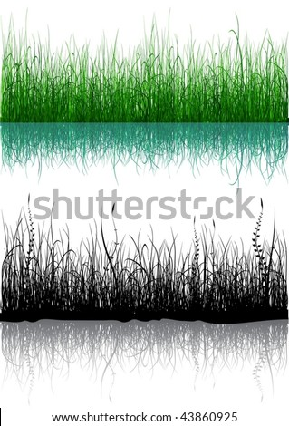 Green and black grass isolated on white - vector in eps8
