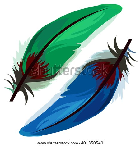 Green and blue feather isolated on white background. Vector illustration.