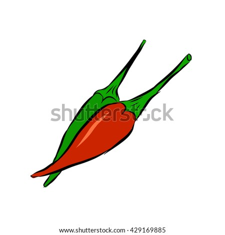 Green and red chili pepper vector - stock vector