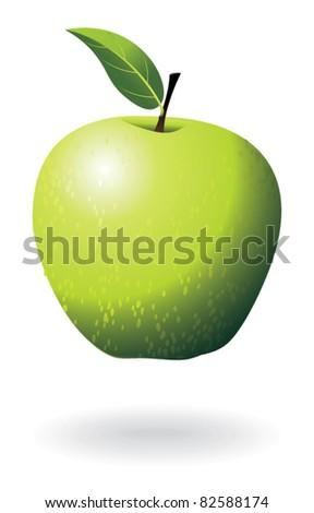 Green apple. - stock vector