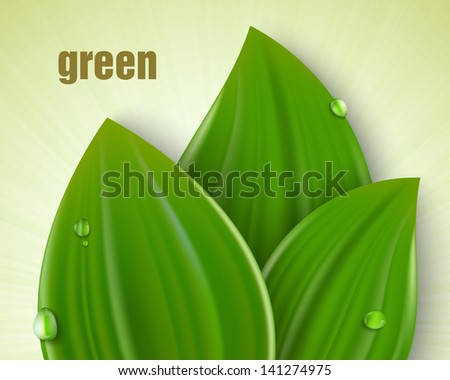 green background with leaves and grass - stock vector