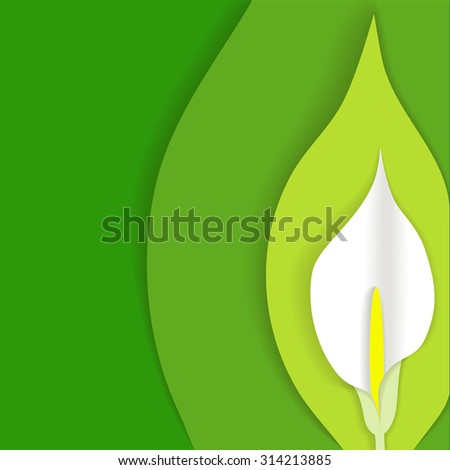 Green background with white calla flower cut out of paper at the side, material design style, in vector
