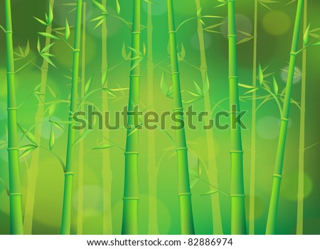 green bamboo forest - stock vector