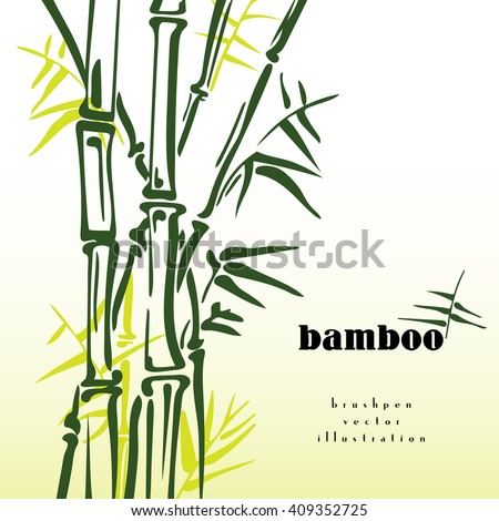 Green bamboo stems vector ink pen painting style. Simple bamboo illustration on white background. Bamboo bush. Bamboo leaves. Freshness in spring.