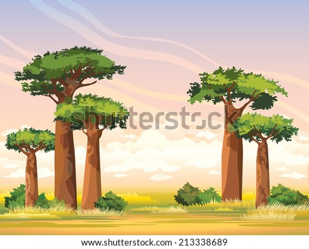 Green baobabs and yellow grass on a sunset sky with group of clouds. African nature landscape. - stock vector