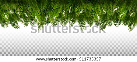 christmas tree branch png. green christmas tree branches on a transparent background vector branch png