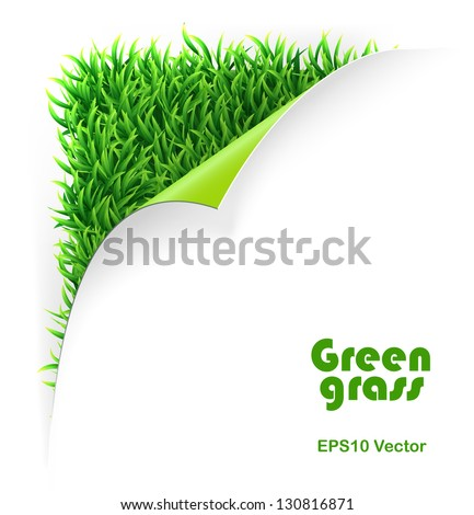 Green curled corner and grass background. vector template - stock vector