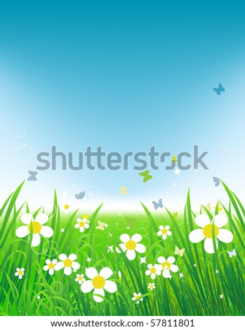 Green field with butterflies, summer background