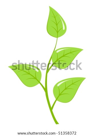 Green fresh plant, young sapling. Vector illustration, isolated on a white.