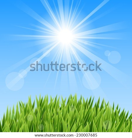 Green Grass And Sun Beam  - stock vector