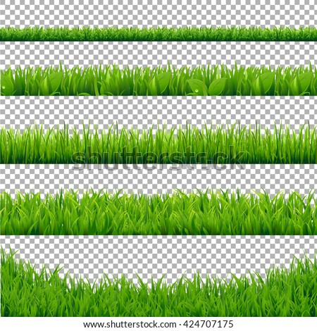Green Grass Borders Collection, Isolated on Transparent Background, Vector Illustration - stock vector