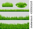 Green Grass Borders Isolated, Isolated on Transparent Background, Vector Illustration - stock vector