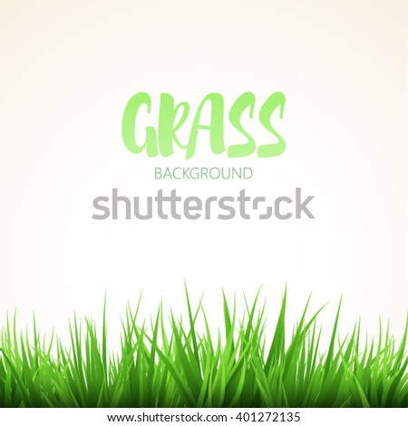 Green grass isolated on white background - stock vector