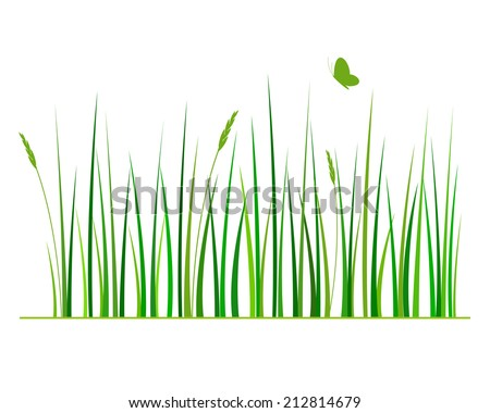 green grass isolated on white background vector illustration - stock vector