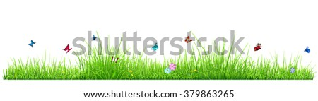Green grass isolated on white background with flowers and butterflies. Vector illustration - stock vector