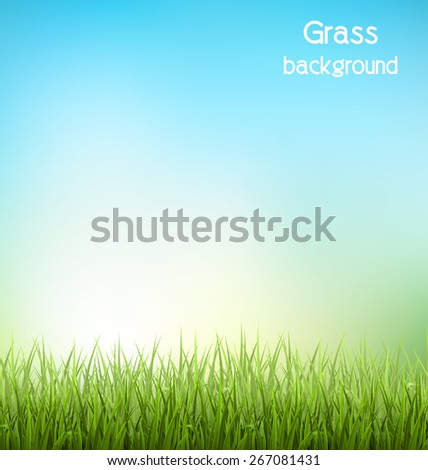 Green grass lawn with sunrise on blue sky. Floral nature spring background - stock vector