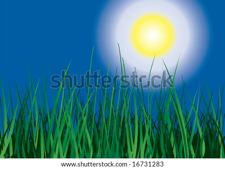 Green grass on sun sky background. Vector illustration. - stock vector