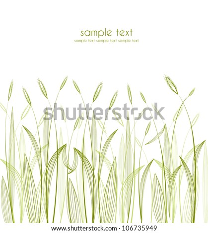 green grass silhouettes on white background - stock vector