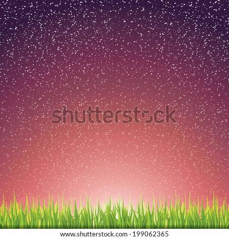 Green grass under the night sky  - stock vector