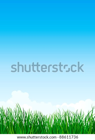 Green grass. Vector illustration with  green grass  on background of blue sky - stock vector