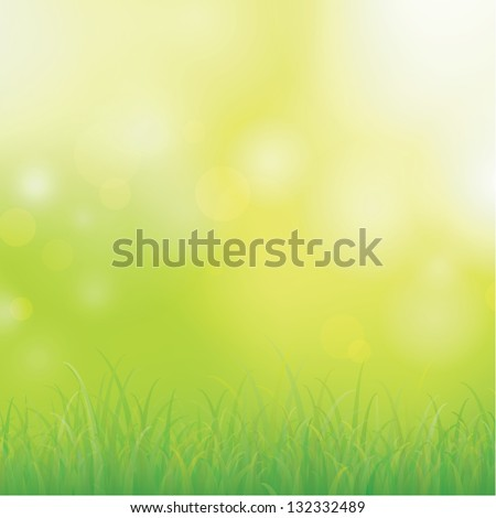 Green grass with bokeh for background, Vector