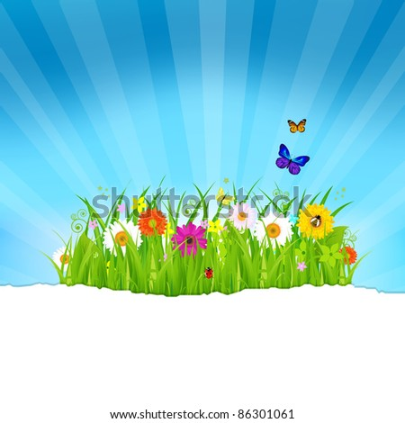 Green Grass With Flowers And Paper, Vector Illustration