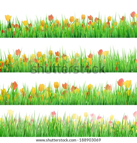 Green grass with flowers isolated on white background. And also includes EPS 10 vector - stock vector