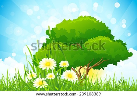 Green Grass with Tree, Sun, Clouds and Rays