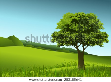 Green landscape with lonely tree - stock vector