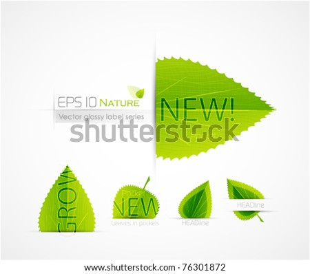 Green leaf labels - stock vector