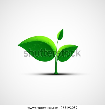 Green leaf logo. Vector image.