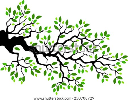 tree branch with leaves vector. green leaf tree branch illustration with leaves vector i