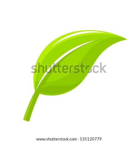 Green leaf. Vector illustration - stock vector
