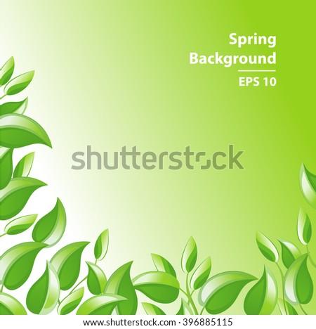 Green Leaves Background. Summer nature. Foliage frame border. Ecology concept. Tea Tree vector illustration. - stock vector