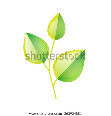 Green leaves branch. Ecology symbol. Spring growing. Green buds vector illustration. - stock vector