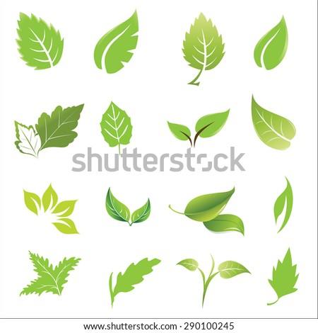 green leaves design elements icon set vector illustration. - stock vector