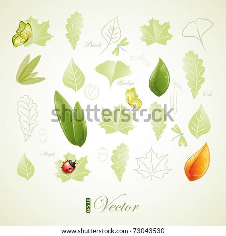 Green leaves design, eps-10 - stock vector