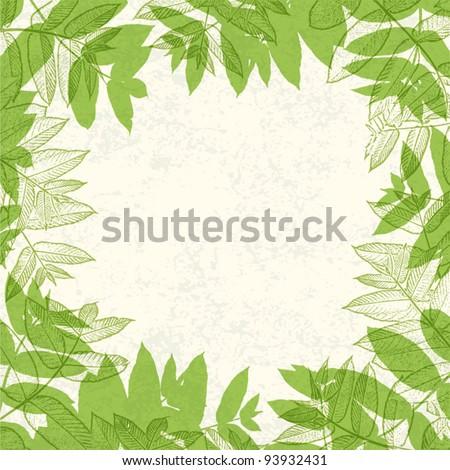 Green leaves frame on paper texture. Vector illustration, EPS10. - stock vector