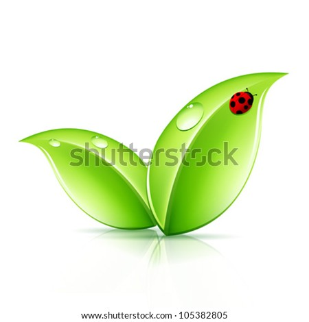 Green Leaves Symbol with Ladybird - stock vector