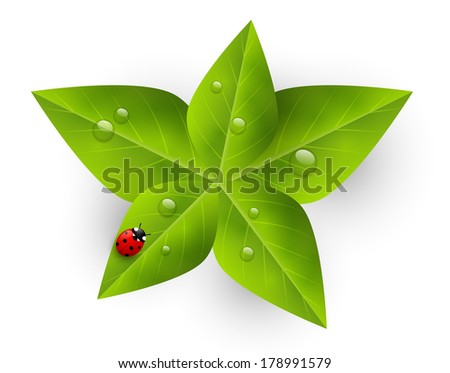 Green leaves with red ladybug