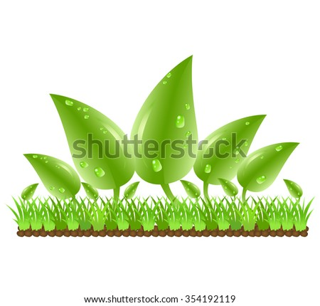Green leaves with water drops on grass and stones. vector illustration of nature on white background. Abstract cartoon of ecology concept idea - stock vector