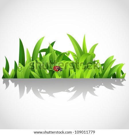 Green lush grass with dew and ladybird - stock vector