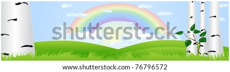 Green meadow with growing birch trees and a rainbow - stock vector